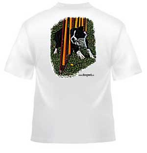 Camiseta doogweb Border collie Agility.