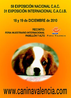 31 Exposicin Canina Internacional de Valencia.