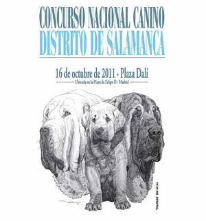 XII Concurso Canino Plaza de Dal, Madrid.