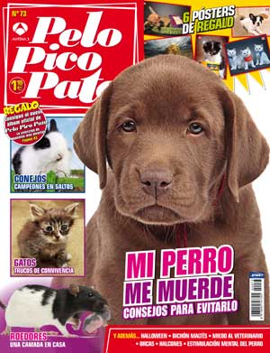 Revista Pelo Pico Pata, noviembre de 2011.