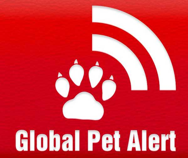 <strong>Global Pet Alert</strong>, una app imprescindible