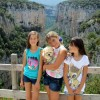 Navarra, un destino dog friendly