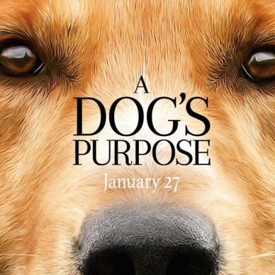 A dog´s purpose, maltrato animal en el cine.