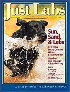 Revista JustLabs
