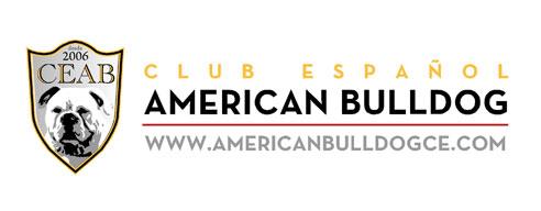 Club español de American Bulldog