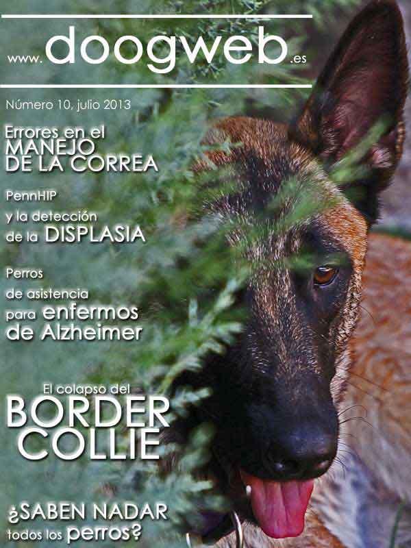 Revista gratis perros. Resumen mensual doogweb nº 10, (contenidos destacados de junio de 2013)