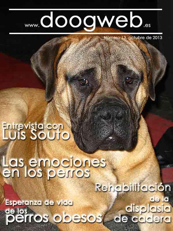 Revista doogweb octubre 2013.
