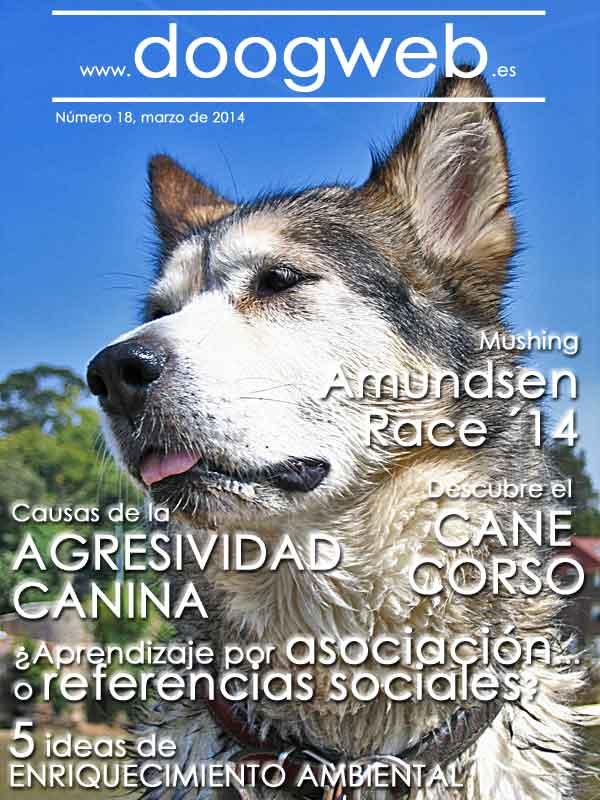 Revista gratis de perros, doogweb número 18.