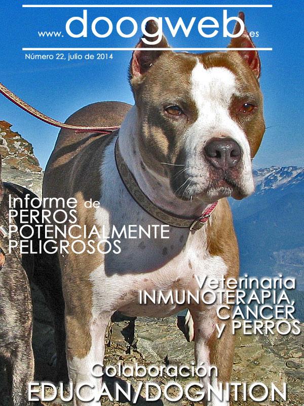 Revista de perros gratis. Doogweb_resumen22.
