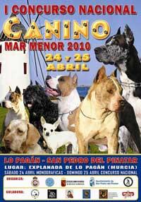 Monográfica de American Staffordshire Terrier, 2010