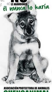 Adopciones de perros en Cuenca