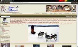 www.malamutedealaska.com