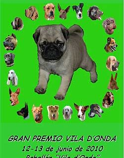 Exposición Canina Internacional de Castellón 2010