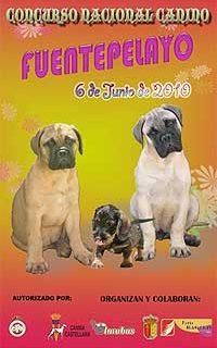 Concurso Nacional Canino Fuentepelayo 2010