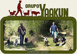 Curso de flores de Bach aplicadas a perros en el Grupo Yaakun