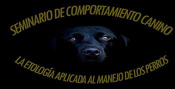 Seminario de Etología Canina en Tenerife