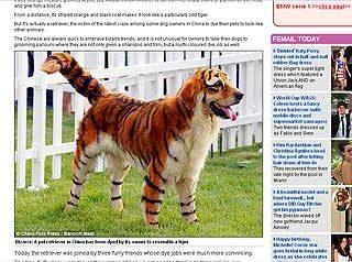Transformación de perros en animales salvajes