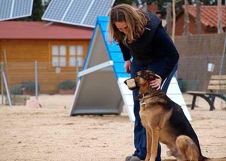 Jane Kelsall de Educación Canina Morecan