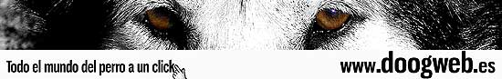 doogweb