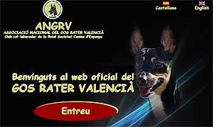 Asociación del Gos Rater, Valencia.