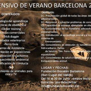 Curso Intensivo de Monitor Canino con Fundación Bocalan Cataluña, 2010.