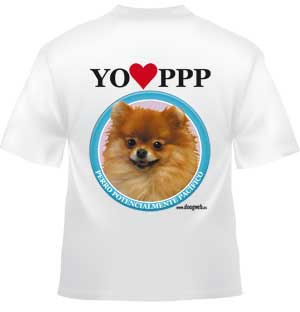 Camiseta doogweb pomerania.