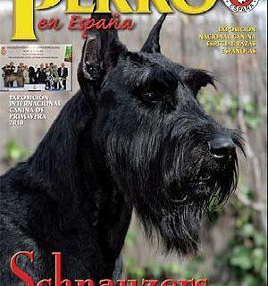 """Boletín oficial de la RSCE """"El Perro en España""""."""