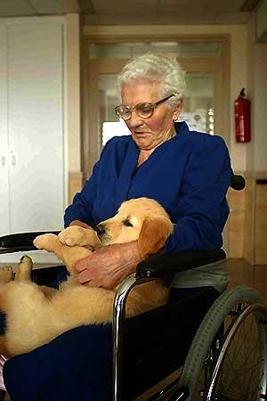 Congreso Internacional Terapia Asistida por Animales