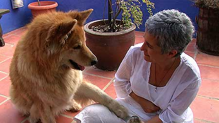 Entrevista con Olga Porqueras Animal Communicator.