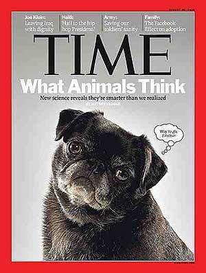 Dentro de la mente de los animales. Tme Magazine.