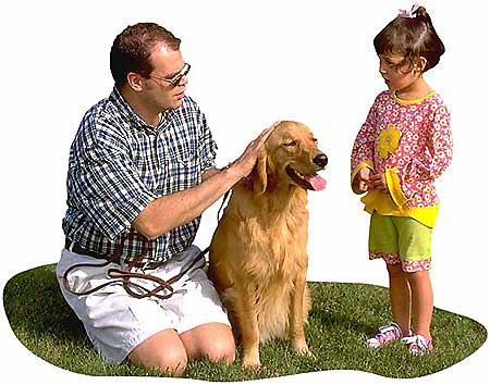 Las emociones durante el aprendizaje del perro.