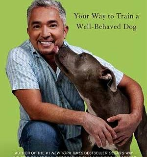 Libro de César Millán. El Encantador de Perros deja atrás el instintivismo y se centra en el refuerzo positivo como base para la educación canina.