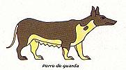 Perro de guarda de patas cortas.