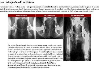 Detección de displasia de cadera en perros, PennHip.