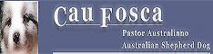 Pastores Australianos de CauFosca.