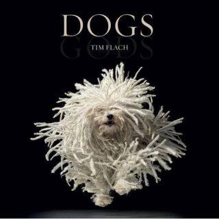 Dogs: Gods, el nuevo libro de Tim Flach
