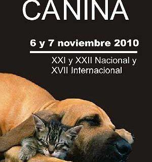 XVII Exposición Canina Internacional de Murcia.