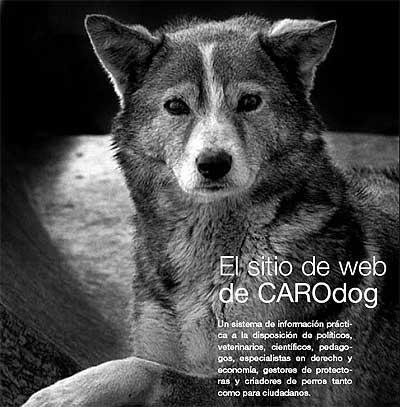 Por una tenencia responsable en el ámbito de la Unión Europea www.carodog.eu