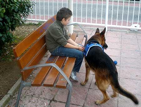 Animales de compañía y niños.