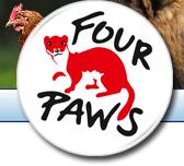 Four Paws.