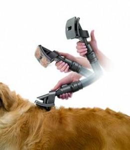 Cepillo especial para perros, acoplable a aspiradoras Dyson.