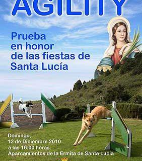 Agility en las Fiestas de Santa Lucía, La Palma