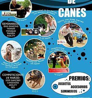 I Festival de Canes de Toledo.