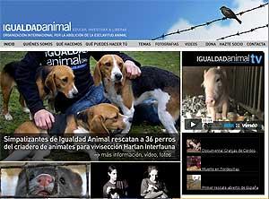 Rescate de 36 perros de un criadero para experimentación y vivisección en Sant Feliú de Codines.