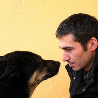 "Entrevista con Jaime Vidal ""Santi"" (Bluenit dogs)."