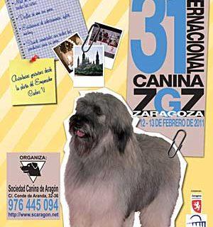 XXXI Exposición Internacional Canina de Zaragoza.