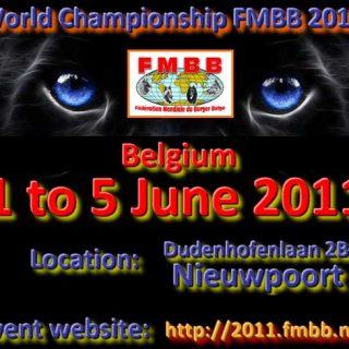 FMBB 2011