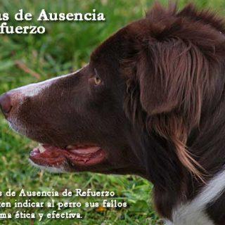 Las Marcas de Ausencia de Refuerzo (M.A.R.) en el adiestramiento canino.