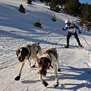 Pirena etapa 14 (penúltima), Naturlàndia Andorra.