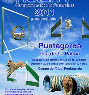Agility en Puntagorda, prueba doble del Campeonato Canario.
